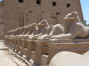 Ram-headed Sphinx at Karnak