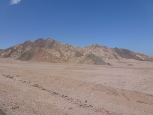 Ride through Sinai