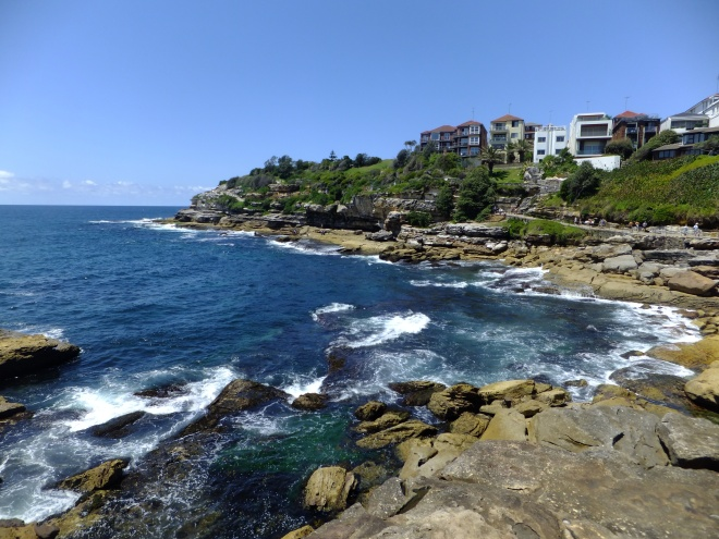 shore next to bondi