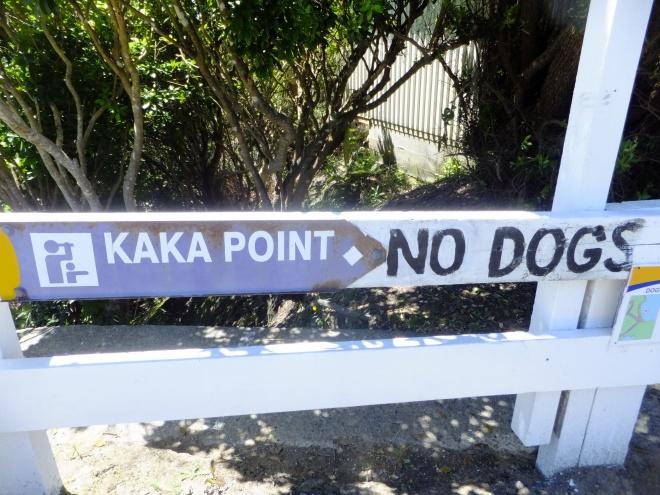 A NZ oxymoron