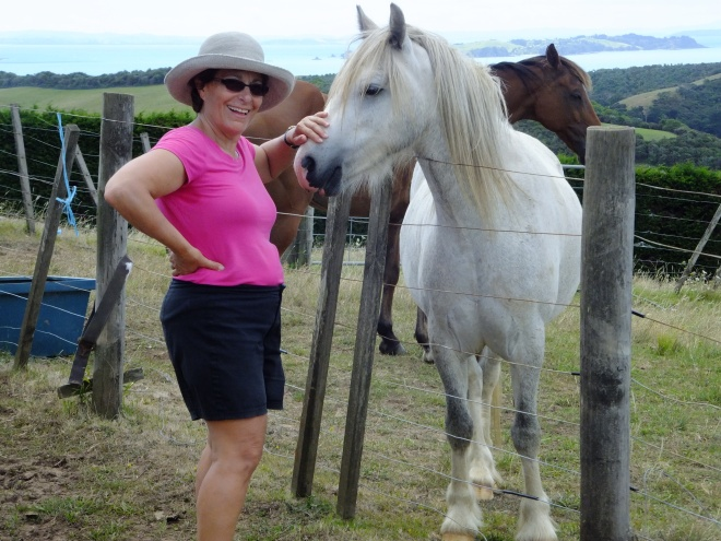 cindy with horse