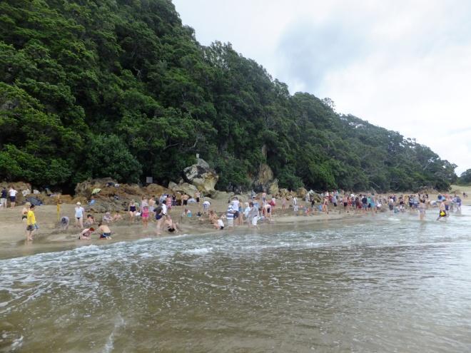 hot water beach scene