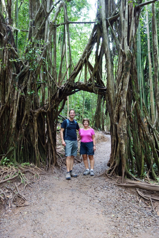 On Manoa Falls trail