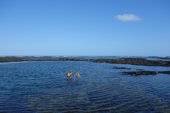 The Kopoho tide pools had some of the most pristine and colorful coral
